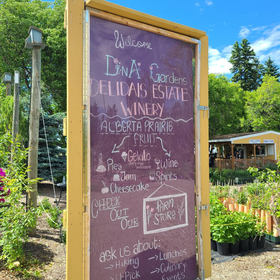 DNA Gardens in Elnora is the perfect spot for an afternoon drive/ride. U-pick, cafe, winery, distillery, garden centre, event space - you name it, they do it! Get a ticket for their Friday night Bootlegger Beer & Brisket - cut off is the Sunday before so they can be sure to have enough to go around. Be sure to pack your cooler too so you can stock up on their preserves, pies, gelato and more!
